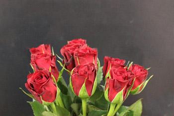 Ramo rosas rojas sevilla