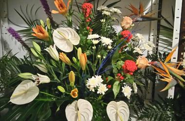 centros flores coloridos en sevilla